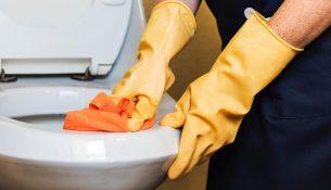diy toiletreiniger
