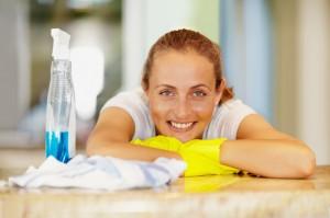 Zoektocht naar de perfecte schoonmaakhulp