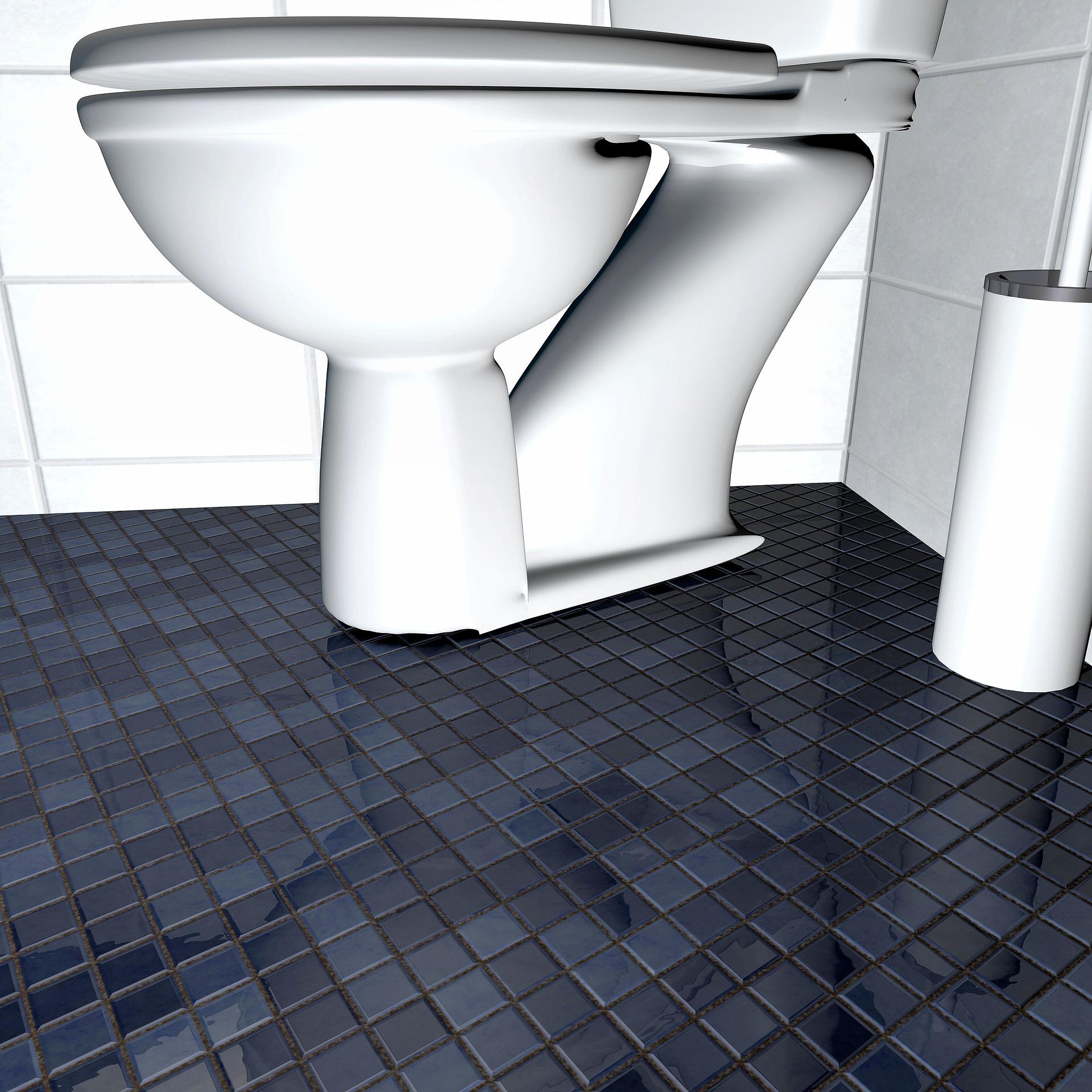 hoe vies is jouw wc